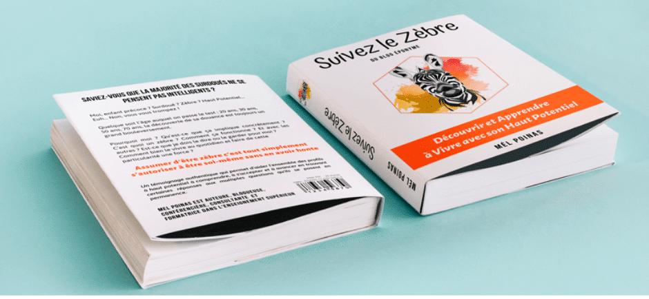 livre suivez le zebre surdoué